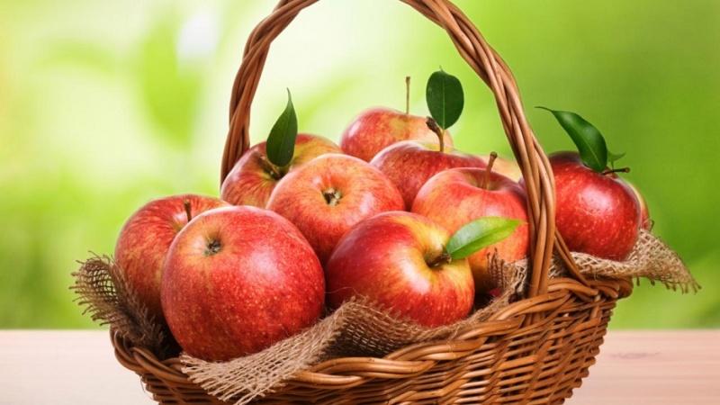 Кожура яблок – защищает от онкологических заболеваний