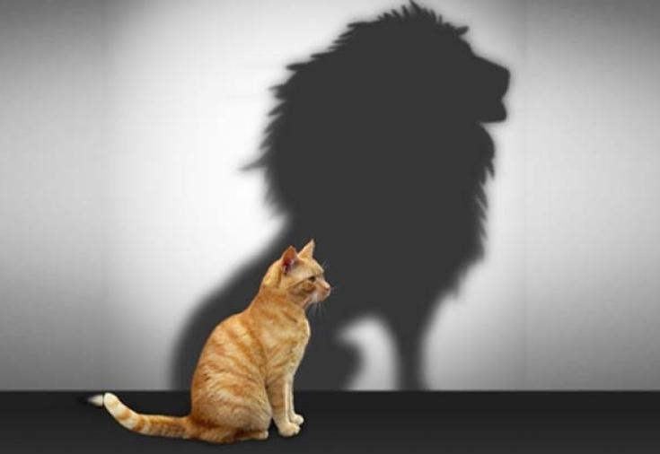 15 шагов к уверенности в себе