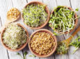 Биогенная еда (проростки)