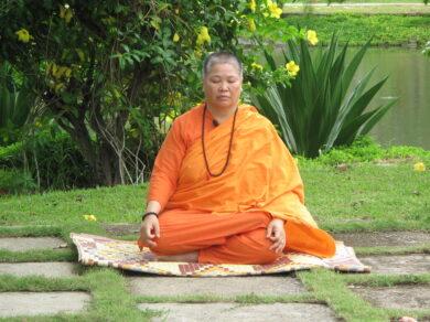 Прана, мысли, эмоции и иммунитет (Свами Ситарамананда)